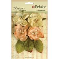 Εικόνα του Botanica Blooms - Peach