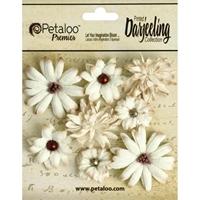 Εικόνα του Darjeeling Teastained Mini Mix - Cream