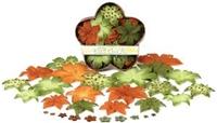 Εικόνα του Λουλουδάκια Ντάλιας σε Διάφορα Χρώματα