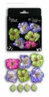 Εικόνα του Λουλούδια Bristol - Chart, Purple, Fushia