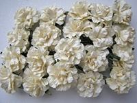 Εικόνα του Τριαντάφυλλα  Εκρού με Glitter