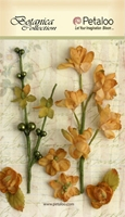 Picture of Floral Ephemera - Amber