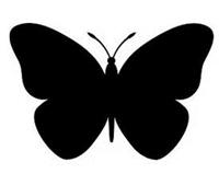 Εικόνα του Book Folding Pattern - Πεταλούδα