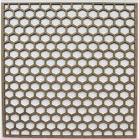 Picture of Chipboard - Hot Hexagon Panel