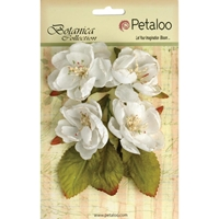 Picture of Botanica Blooms - White