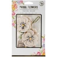Εικόνα του Prima Flowers - Blackthorn