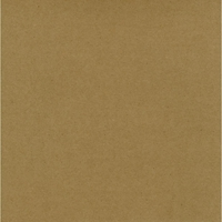 Picture of WorldWin Kraft Cardstock 30.5X30.5