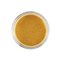 Picture of Sweet Dixie Embossing Powder - Precious Gems Pearl Gold
