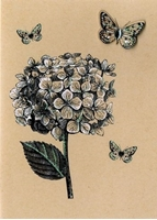 Picture of Yours Truly Greeting Cards - Hydrangea