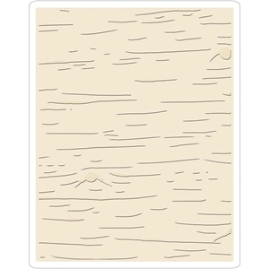 Picture of Sizzix Texture Fades Embossing Folder By Tim Holtz - Birch