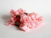 Εικόνα του Shabby Crinkled Seam Binding Ribbon - Baby Pink
