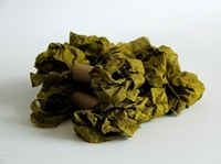 Εικόνα του Shabby Crinkled Seam Binding Ribbon - Dusty Olive
