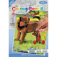 Εικόνα του Royal & Langnickel Mini Color Pencil By Number Kit - Puppy & Butterfly