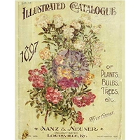 Εικόνα του Iron Orchid Designs Decor Transfer Rub-Ons - Nanz Neuner Floral Bouquet