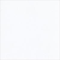 """Εικόνα του Bazzill Classic Cardstock 12""""X12"""" - White Smooth"""