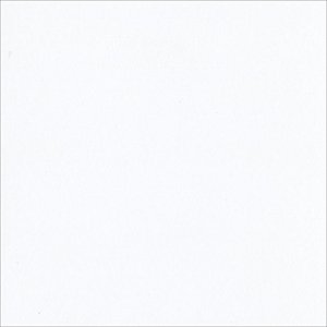 "Picture of Bazzill Classic Cardstock 12""X12"" - White Smooth"