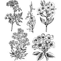 """Εικόνα του Tim Holtz Cling Stamps 7""""X8.5"""" - Illustrated Garden"""