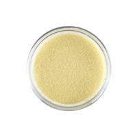 Εικόνα του Sweet Dixie Embossing Powder Pastels - Champagne