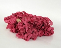 Εικόνα του Shabby Crinkled Seam Binding Ribbon - Evening Rose