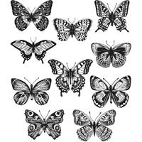 """Εικόνα του Tim Holtz Σετ Σφραγίδες 7""""X8.5"""" - Flutter"""
