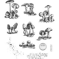 """Εικόνα του Tim Holtz Σετ Σφραγίδες 7""""X8.5"""" - Tiny Toadstools"""