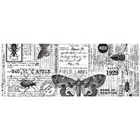 Εικόνα του Idea-Ology Collage Paper - Entomology