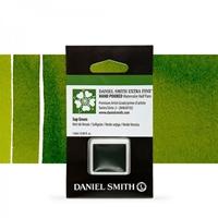 Εικόνα του Daniel Smith Extra Fine Χρώμα Ακουαρέλας Half Pan - Sap Green