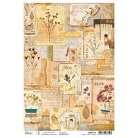 Εικόνα του Ciao Bella Ριζόχαρτο A4 - Book Of Dried Flowers, Sign Of The Times