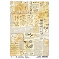 Εικόνα του Ciao Bella Ριζόχαρτο A4 - Species Plantarum, Sign Of The Times