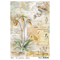 Εικόνα του Ciao Bella Ριζόχαρτο A4 - Botanical, Sign Of The Times