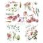 """Εικόνα του Prima Marketing Sharon Ziv Rub-On Transfers 8.5""""X11"""" - Orchidea"""